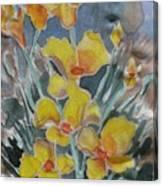 Yellow Flowers At Arboretum Canvas Print