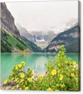 Yellow Flowers At Lake Louise Canvas Print