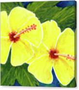 Yellow Hibiscus Flower #292 Canvas Print