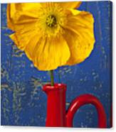 Yellow Iceland Poppy Red Pitcher Canvas Print