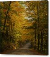Yellow Leaves Road Canvas Print