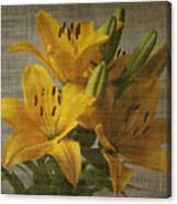Yellow Lilies With Old Canvas Texture Background Canvas Print