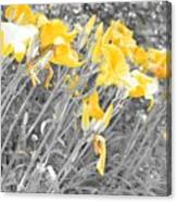 Yellow Moment In Time Canvas Print