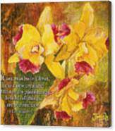 Yellow Orchids Acrylic 2 Cor 5 Canvas Print