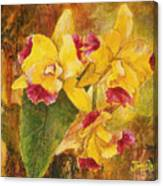 Yellow Orchids Acrylic Canvas Print