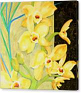 Yellow Orchids With Black Screen Canvas Print