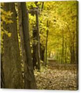 Yellow Path Canvas Print
