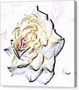 Yellow Rose Canvas Print