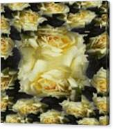 Yellow Roses 2 Canvas Print