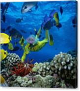 Yellow Scuba Diver Canvas Print