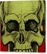 Yellow Skull Canvas Print