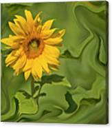 Yellow Sunflower On Green Background Canvas Print
