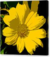 Yellow Sunshine Work Number 8 Canvas Print