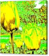 Yellow Tulips Abstract Canvas Print