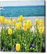 Yellow Tulips Near Lake Canvas Print