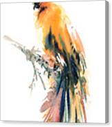 Yellow Wild Bird Canvas Print