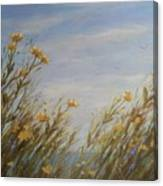 Yellow Wildflowers In The Sea Breeze Canvas Print