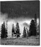 Yellowstone 157 Canvas Print