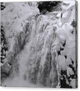 Yellowstone 43 Canvas Print