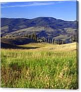 Yellowstone Landscape 3 Canvas Print