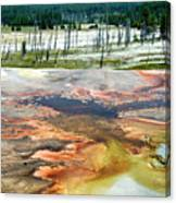 Yellowstone Park Firehole Spring Area Vertical 02 Canvas Print