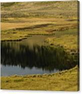 Yellowstone River Pond Canvas Print