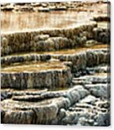Yellowstone Rock Formation Canvas Print