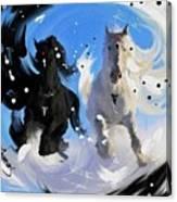 Yin Yang Horse Canvas Print