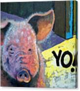 Yo Pig Canvas Print