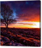 Yorkshire Beauty Canvas Print