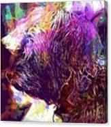 Yorkshire Puppy Domestic Animal  Canvas Print