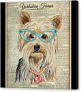 Yorkshire Terrier-jp3856 Canvas Print