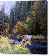 Yosemite 1 Canvas Print