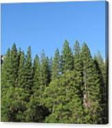 Yosemite Domes Canvas Print