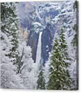 Yosemite Falls In The Snow Canvas Print