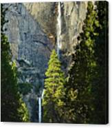 Yosemite Falls With Late Afternoon Light In Yosemite National Park. Canvas Print