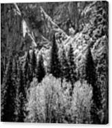 Yosemite Meadow In Black And White Canvas Print