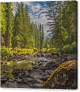 Yosemites N Park Canvas Print