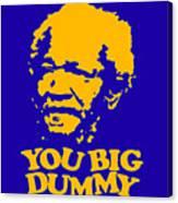 You Big Dummy Canvas Print