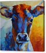 Young Blood - Longhorn Canvas Print
