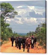 Young Herders, Zambia Canvas Print
