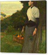 Young Woman In A Garden Of Oranges Canvas Print