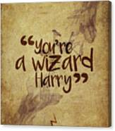 You're A Wizard Harry Canvas Print