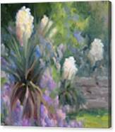 Yucca And Wisteria Canvas Print