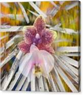 Yucca Dreaming Of Orchids Canvas Print