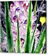 Yucca Flower Plant Southwestern Art Canvas Print