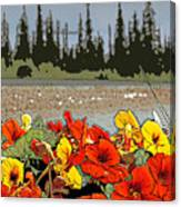 Yukon Flowers Canvas Print