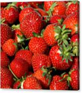 Yummy Fresh Strawberries Canvas Print