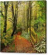 Zac's Fav Walk Canvas Print