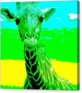 Zany Giraffe Canvas Print